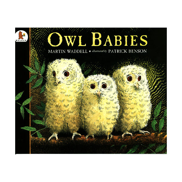 Pictory - Owl Babies (Book & CD)