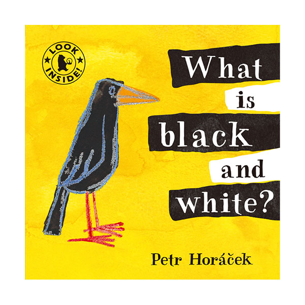 Pictory - What is Black and White? (Book & CD)