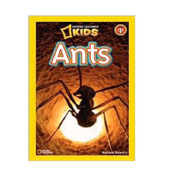 [파본] RL 2.5 : National Geographic Kids Readers Level 1 : Ants (Paperback)