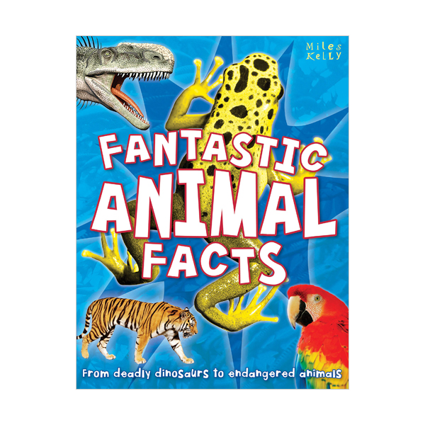 [특가] Fantastic Animal Facts (Paperback, 영국판)