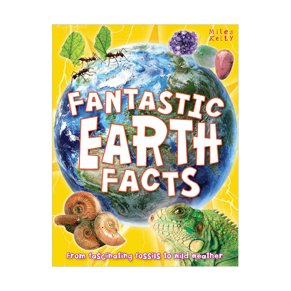 [특가] Fantastic Earth Facts (Paperback, 영국판)