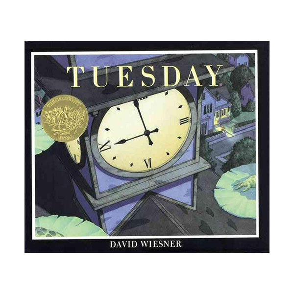 [1992 칼데콧] Tuesday (Hardcover, Caldecott)