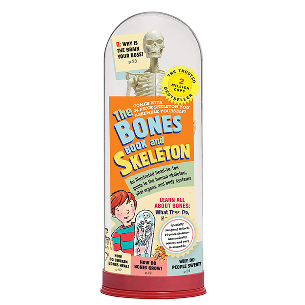 Bones Book And Skeleton (Hardcover)