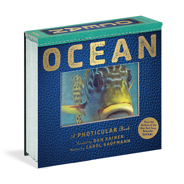 ★키즈코믹콘★ Ocean : A Photicular Book (Hardcover)
