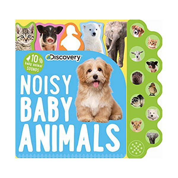 Discovery Noisy Baby Animals : 10 Baby Animal Sounds
