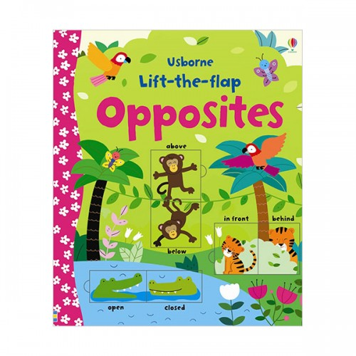 Lift-the-Flap Opposites (Board book, 영국판)