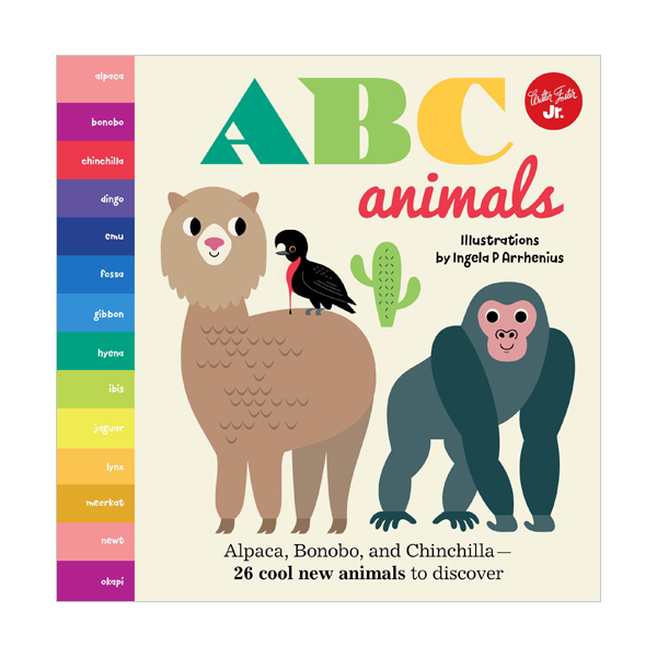Little Concepts : ABC Animals : Alpaca, Bonobo, and Chinchilla (Board book, 영국판)
