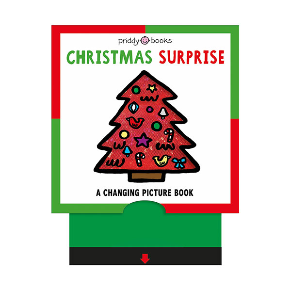 A Changing Picture Book : Christmas Surprise (Board book)