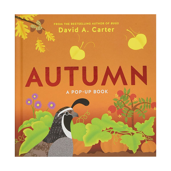 Seasons Pop-up : Autumn (Hardcover)
