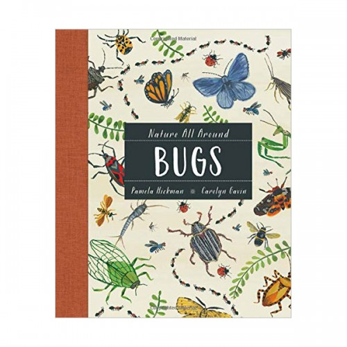 Nature All Around : Bugs (Hardcover)