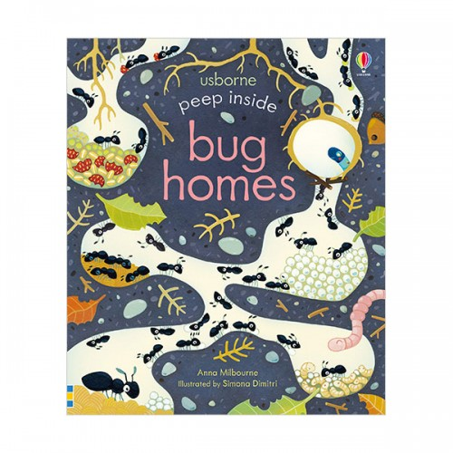 Usborne Peep Inside : Bug Homes (Board book, 영국판)