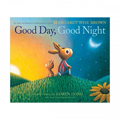 Good Day, Good Night (Paperback, 영국판)