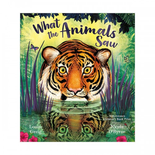 What The Animals Saw (Paperback, 영국판)