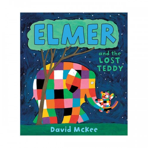 Elmer and the Lost Teddy (Paperback, 영국판)