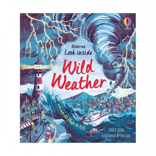 Look Inside : Wild Weather (Board book, 영국판)