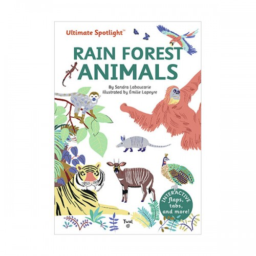 Ultimate Spotlight : Rain Forest Animals (Hardcover)