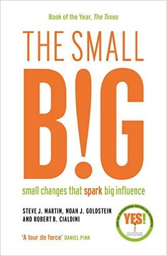 The Small Big : Small Changes That Spark Big Influence (Paperback, 영국판)