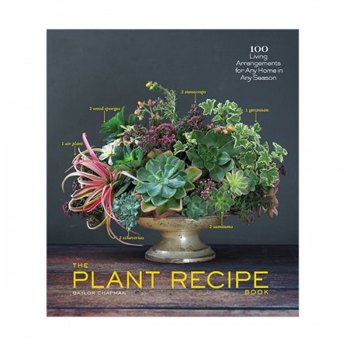 The Plant Recipe Book : 100 Living Centerpieces for Any Home in Any Season (Hardcover)