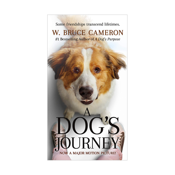 A Dog's Journey (Paperback, MTI)