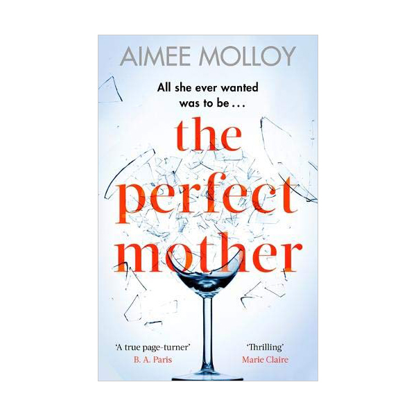 The Perfect Mother (Paperback, 영국판)