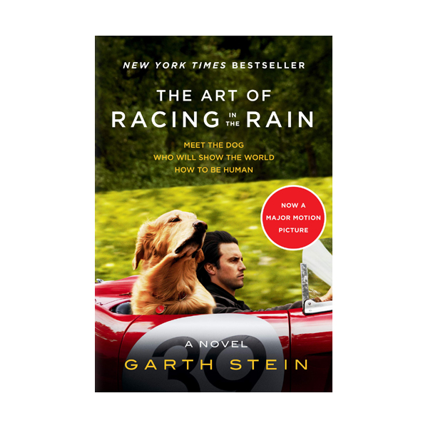 The Art of Racing in the Rain (Paperback, MTI)