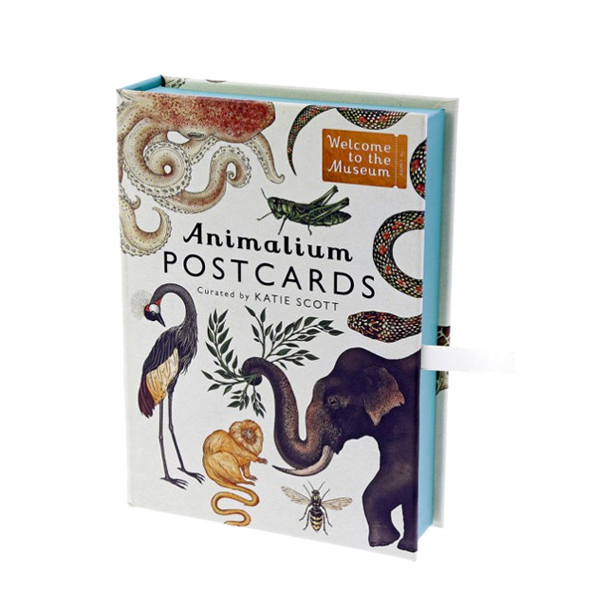 Welcome to the Museum : Animalium Postcards (Postcards)