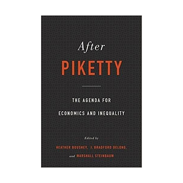 After Piketty: The Agenda for Economics and Inequality (Hardcover)