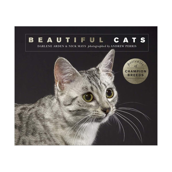Beautiful Cats : Portraits of champion breeds (Beautiful Animals) (Paperback, 영국판)