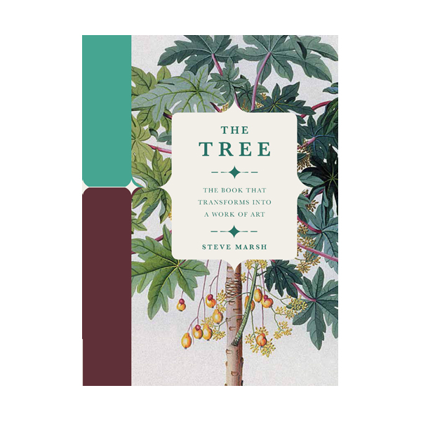Paperscapes : The Tree (Hardcover, 영국판)