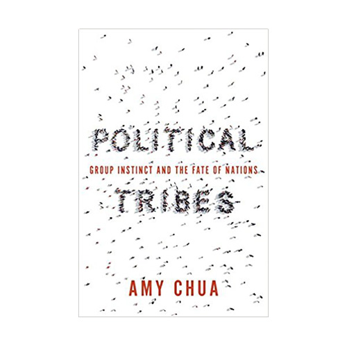 Political Tribes : Group Instinct and the Fate of Nations (Paperback)