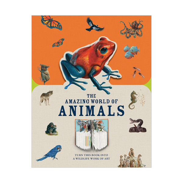 Paperscapes : The Amazing World of Animals (Hardcover, 영국판)