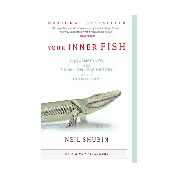 Your Inner Fish : A Journey into the 3.5-Billion-Year History of the Human Body (Paperback)