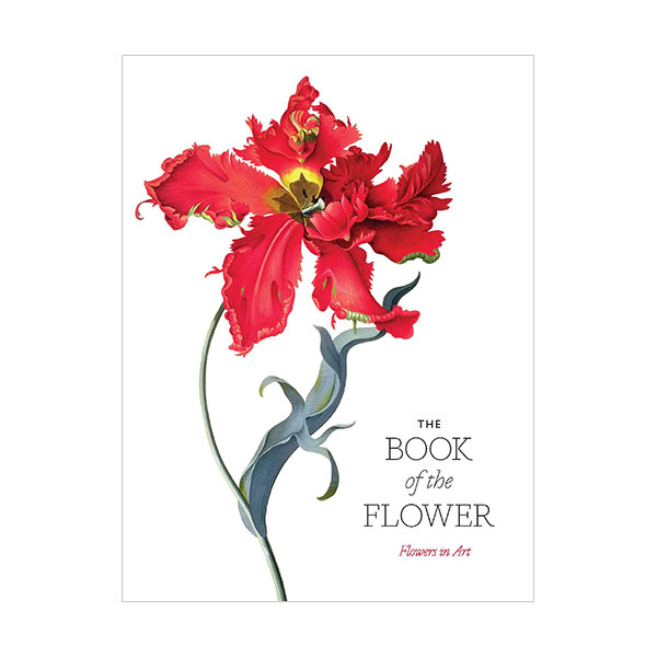 The Book of the Flower : Flowers in Art (Paperback, 영국판)