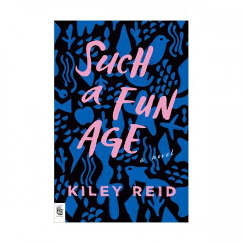 Such a Fun Age (Paperback, INT)