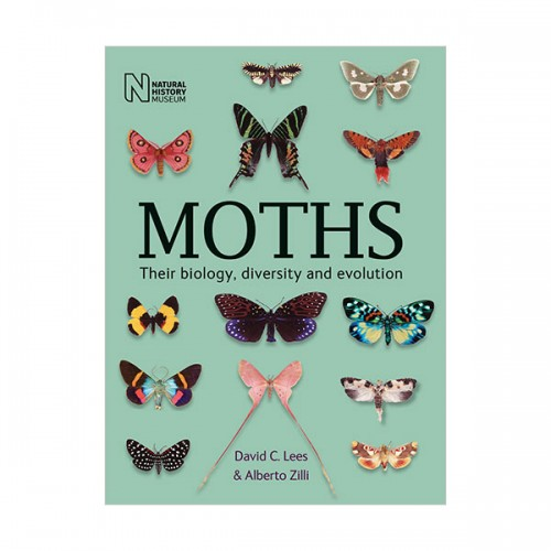 Moths : Their biology, diversity and evolution (Paperback, 영국판)