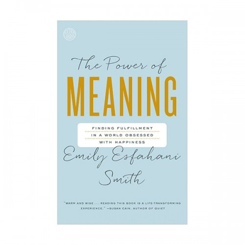 The Power of Meaning (Paperback)