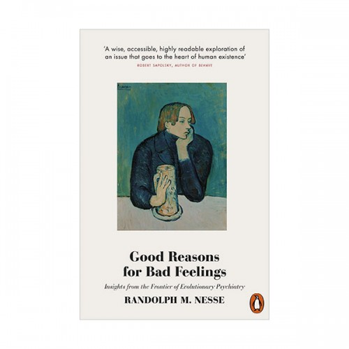Good Reasons for Bad Feelings : 이기적 감정 (Paperback, 영국판)
