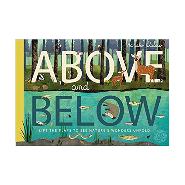Above and Below (Paperback, 영국판)