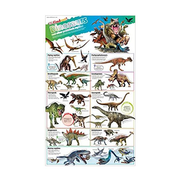DK find out! Dinosaurs Poster (Wall Chart, 영국판)