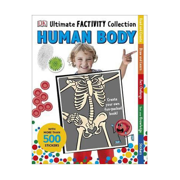 Ultimate Factivity Collection : Human Body (Paperback, 영국판)