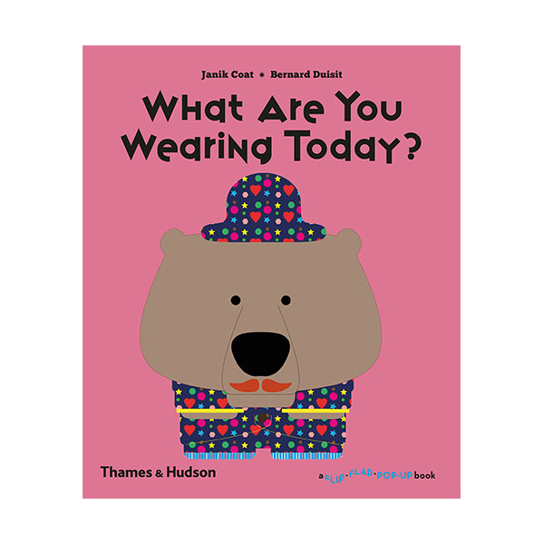 What Are You Wearing Today? : A Flip Flap Pop Up Book (Paperback)