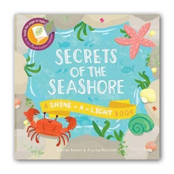 A Shine-a-Light Book : Secrets of the Seashore (Paperback, 영국판)