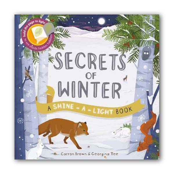 A Shine-a-Light Book : Secrets of Winter (Paperback, 영국판)