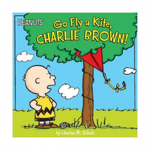 Peanuts : Go Fly a Kite, Charlie Brown! (Paperback)