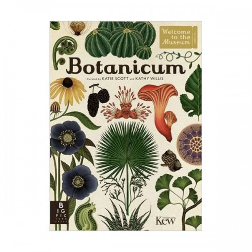 Welcome to the Museum : Botanicum (Hardcover)