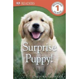 Dk Readers Level 1 : Surprise Puppy (Paperback)