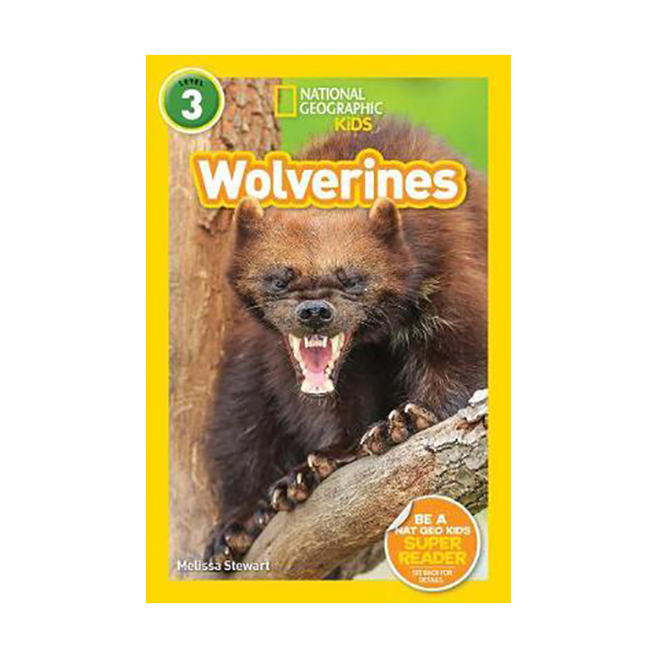 National Geographic Kids Readers 3: Wolverines(Paperback)