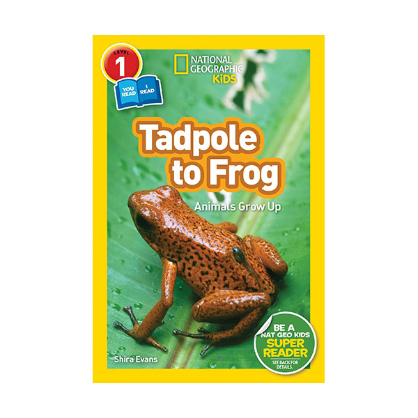 National Geographic Readers 1 : Co-readers : Tadpole to Frog (Paperback)