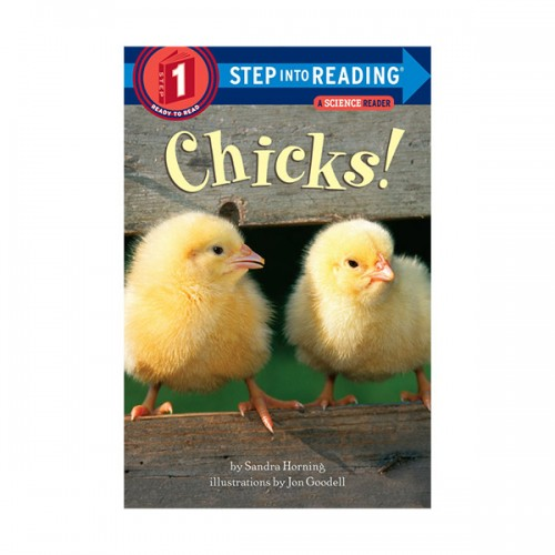 RL 1.1 : Step Into Reading 1 : Chicks! (Paperback)