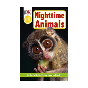 DK Readers Pre-Level : Nighttime Animals (Paperback)
